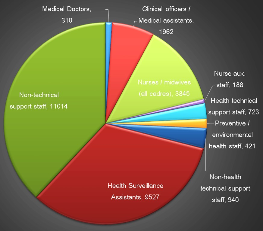 Pie chart of MOH staff by cardre